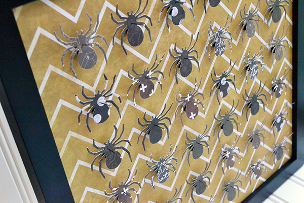 Spider Specimen Art by Aly Dosdall_close 1