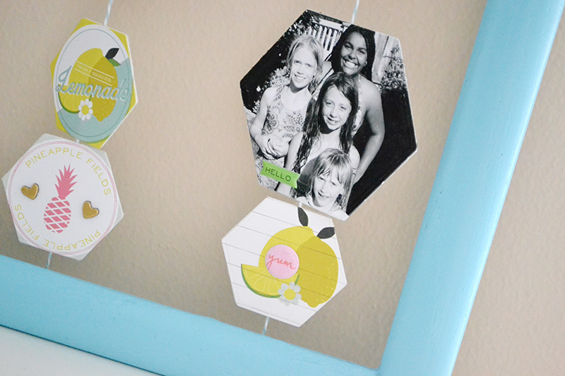 Summer Snapshots Photo Display using Evolution Advanced by Aly Dosdall_close 2