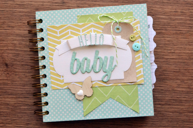 Aly Dosdall Cinch Baby Book