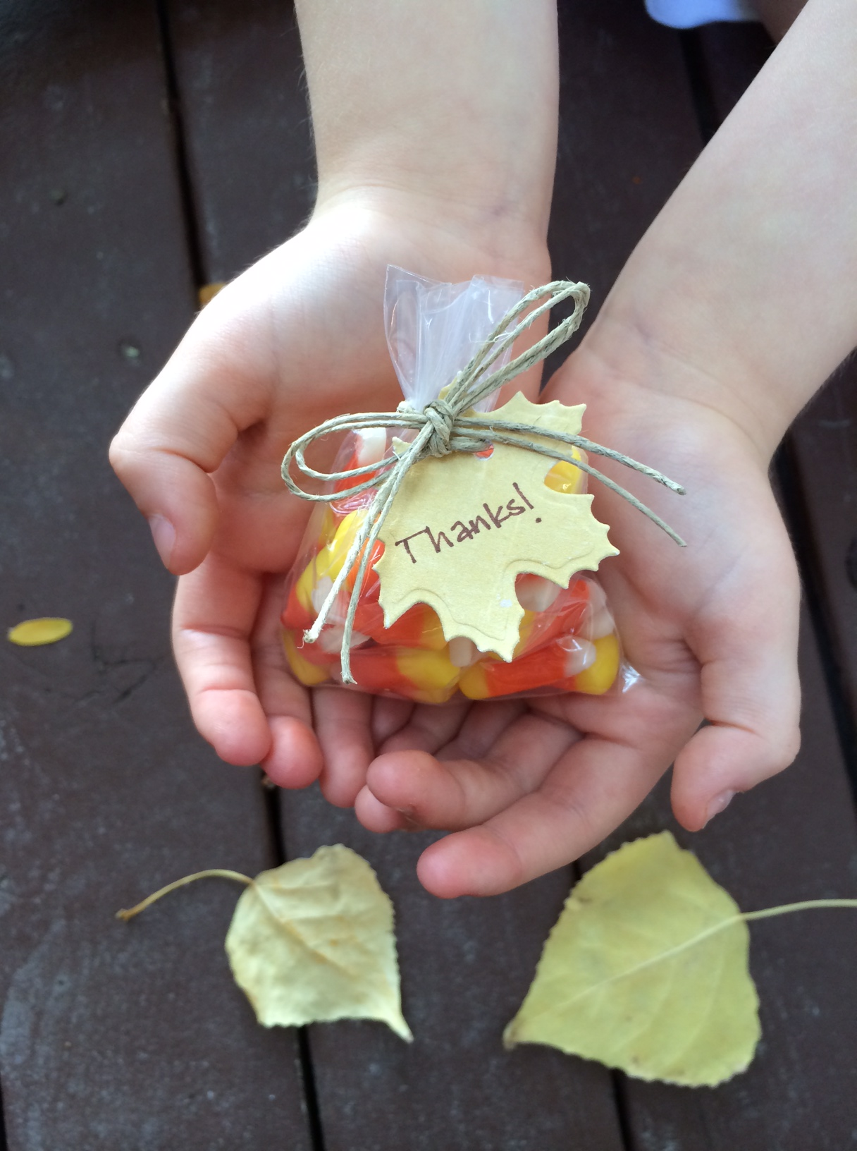 fall-favor-bags-by-aly-dosdall-3