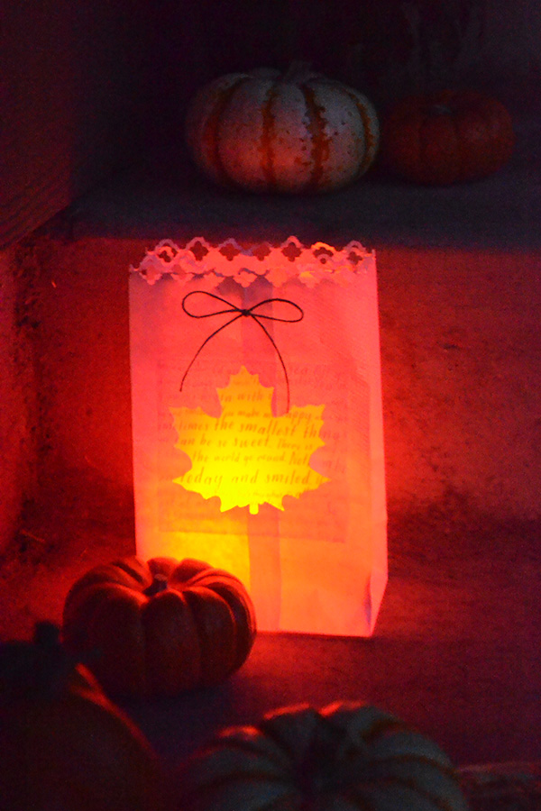 fall-luminaries-by-aly-dosdall-1