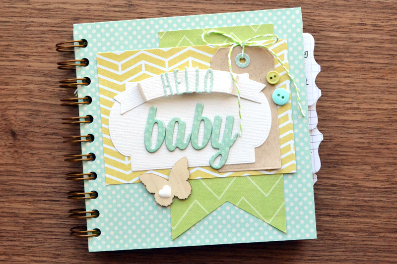 Cinch Baby Book