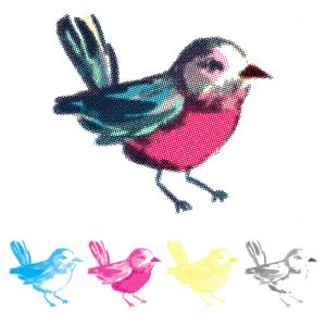 660543_WR_PrecisionPress_CMYKStamps_Bird_Vector