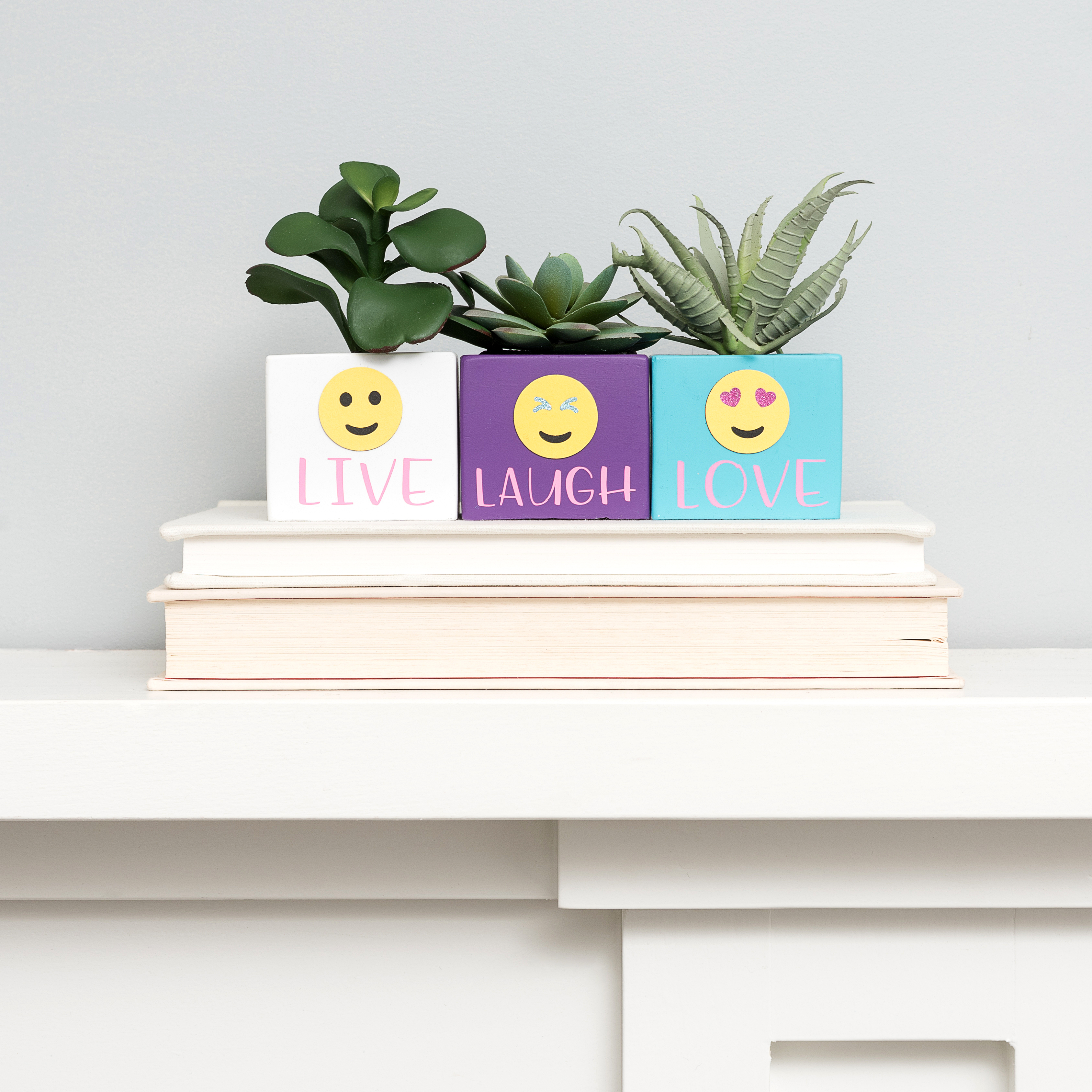 Emoji Punch Board Succulent Planters by We R Memory Keepers